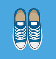 pair of casual sneakers isolated on blue backdrop vector image