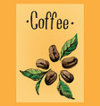 poster with a coffee beans and leaves text vector image