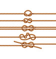 set isolated ropes with different knot types vector image