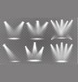 spotlight light vector image vector image