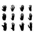 black footprints of monkey vector image vector image