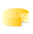 cheese in white vector image vector image