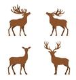 deer flat vector image