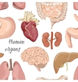 Different human organs set pattern vector image vector image