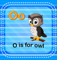flashcard letter o is for owl vector image