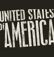 inscription united stated america in grunge vector image