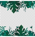 tropic banner design template tropical leaves vector image