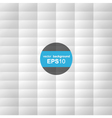 White texture - minimalistic design vector image vector image