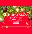 christmas sale design with pine tree branches vector image vector image
