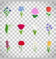 spring flowers icons on transparent background vector image