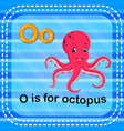 flashcard letter o is for octopus vector image