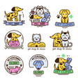 pet badge graphic sticker set domestic vector image