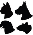 set silhouette cat dogratparrot heads vector image vector image