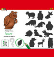 shadows game with bear characters vector image vector image