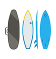 Surfing Board Set vector image vector image