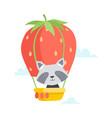 cute little raccoon travelling by hot air balloon