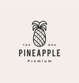 pine apple hipster vintage logo icon vector image