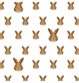 rabbit head pattern low poly isolated icon vector image vector image