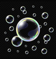 realistic soap bubbles isolated vector image
