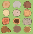 wood slice texture wooden tree life age vector image vector image
