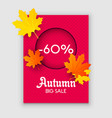 autumn sale yellow fall leaves background vector image vector image