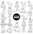 cartoon purebred dogs set color book page vector image