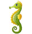 Cute sea horse cartoon vector image vector image