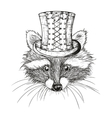 hand drawn raccoon vector image vector image