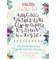 Handwritten decorative alphabet vector image