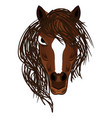 horse mascot cartoon head vector image vector image
