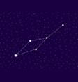 leo minor constellation starry night sky cluster vector image