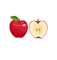 Red apple whole and half