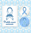 Sketch prostate cancer poster and lables vector image