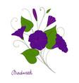 decorative element convolvulus bouquet blue or vector image vector image