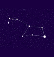 puppis constellation starry night sky cluster of vector image vector image