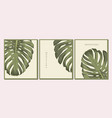 set backgrounds with green exotic tropic leaves vector image vector image