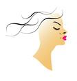 Wavy hair vector image vector image