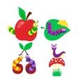 Cartoon caterpillar vector image