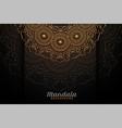 luxury mandala decoration on black background vector image
