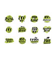 natural organic logo or label eco set badges vector image vector image
