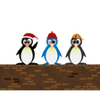 penguin standing on wall1 vector image