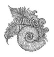 prehistoric graphic seashell and fern branches vector image vector image