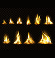 realistic fire set for animation flame isolated vector image
