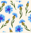 seamless pattern with blue corn flowers vector image vector image