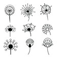 set of dandelions collection of stylized vector image
