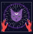 violet cat face with moon on night sky with vector image vector image