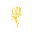 wheat logo template vector image vector image