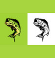 bass fish vector image