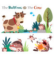 bullfrog and cow vector image
