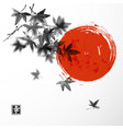 japanese maple leaves and red sun